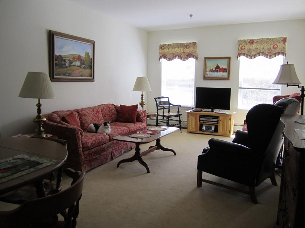 Living Room (deluxe two-bedroom)
